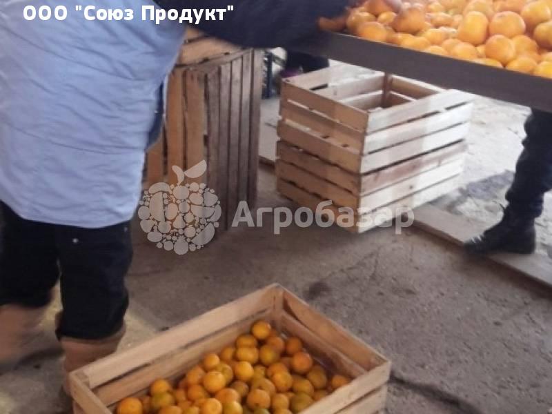 Секс месть мандарины в анапе фото